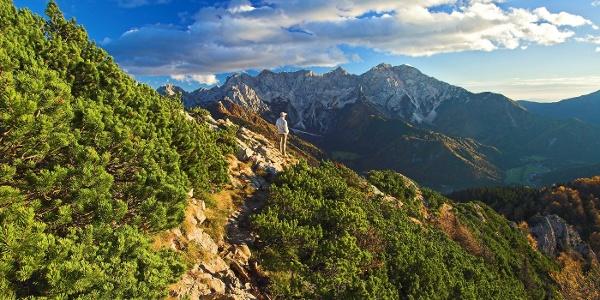 Blick in die Steiner Alpen vom Panoramaweg Südalpen aus