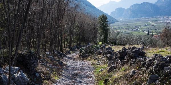 L'ultima parte di discesa col panorama sulla Valle del Basso Sarca
