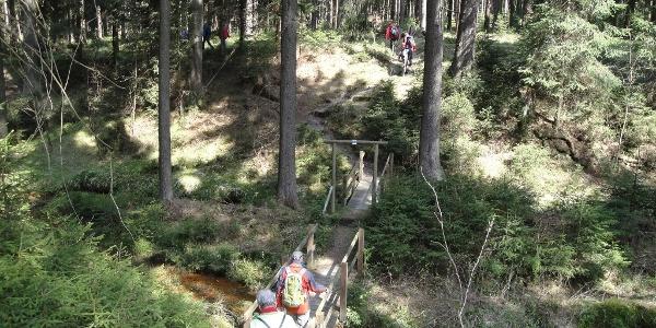 Floßgrabensystem bei Muldenberg