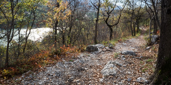 Part of the descent path in autumn, with Lake Cavedine in the background