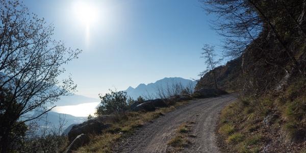 Einer der Aussichtspunkte, auf dem Forstweg in Richtung Bocca di Tovo