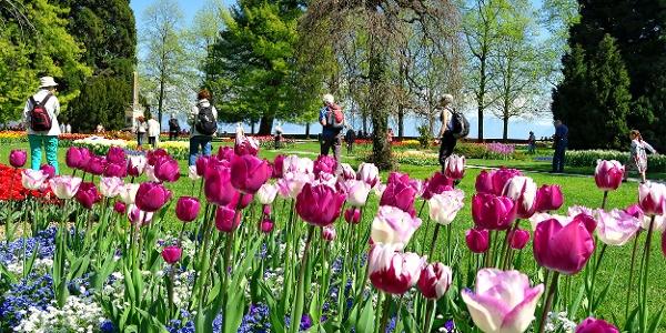 Tulpenfestival im Parc de l'Indépendance.