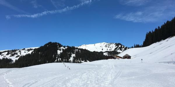 Blick vom Glaubenbergpass zum Rickhubel.