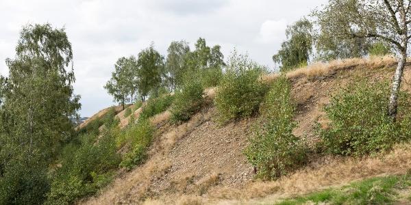 Alte Elisabeth Fundgrube mine - Heap