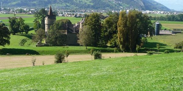 Das ehemalige Wasserschloss Marschlins liegt in der Ebene circa einen Kilometer nordöstlich von Igis.
