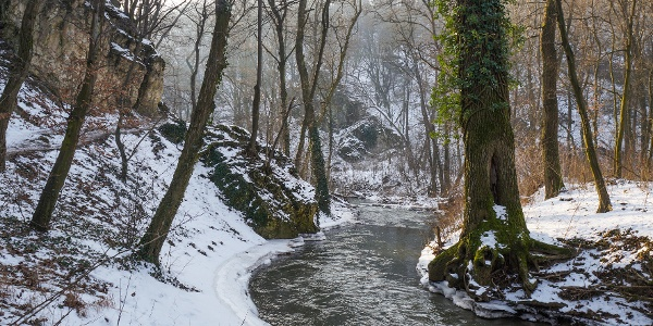 Gaja Creek in winter