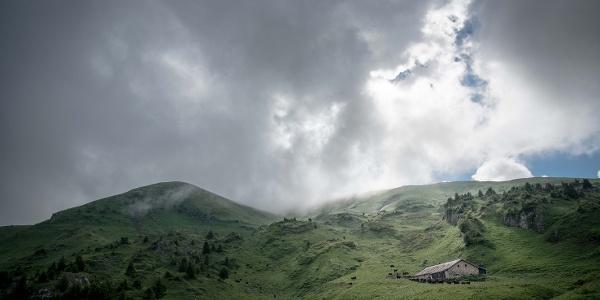 Alpbetrieb oberhalb Champéry