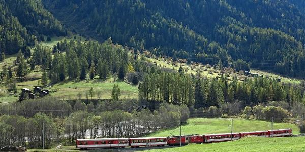 Matterhorn-Gotthard-Bahn im Goms.