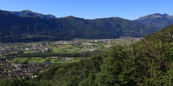 Blick über die Magadino-Ebene.