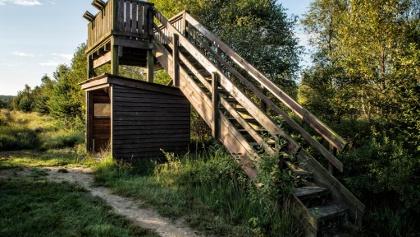 Aussichtsturm Hagener Königsmoor