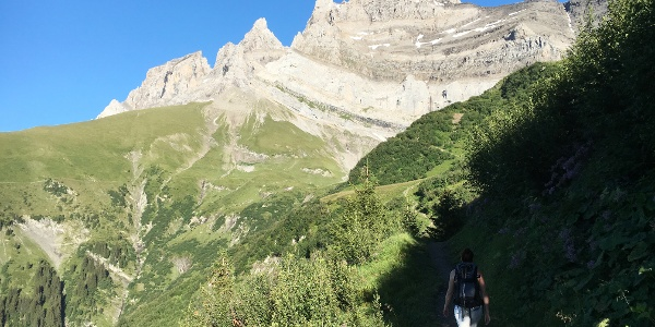 View to the Dents du Midi mountains