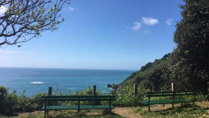 Benches with views