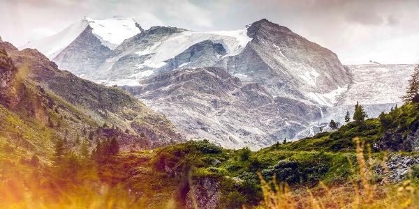 Turtmann valley and Turtmann glacier with Bishorn peak in the background