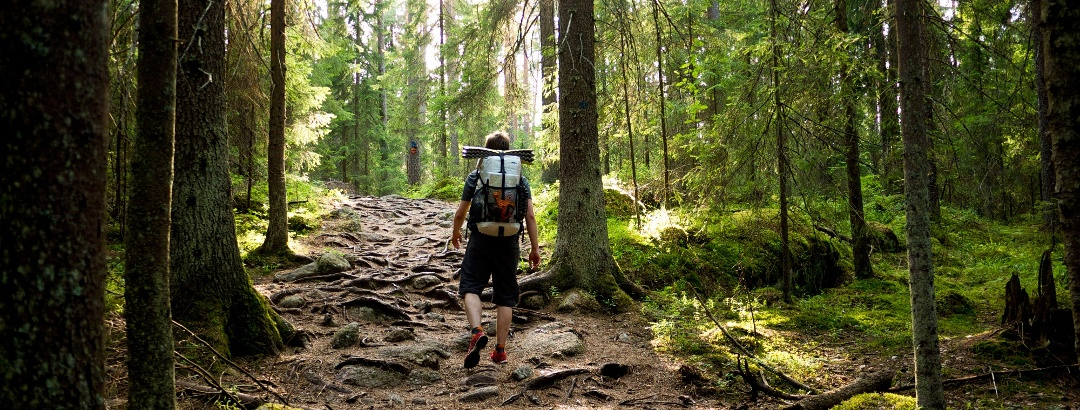 Hiking in Finland • Travel Guide » outdooractive.com