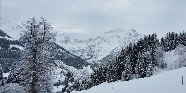 Schöntalhof Ausblick in die Walser Bergwelt Winter