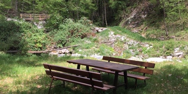 Pic-Nic Area along the trail