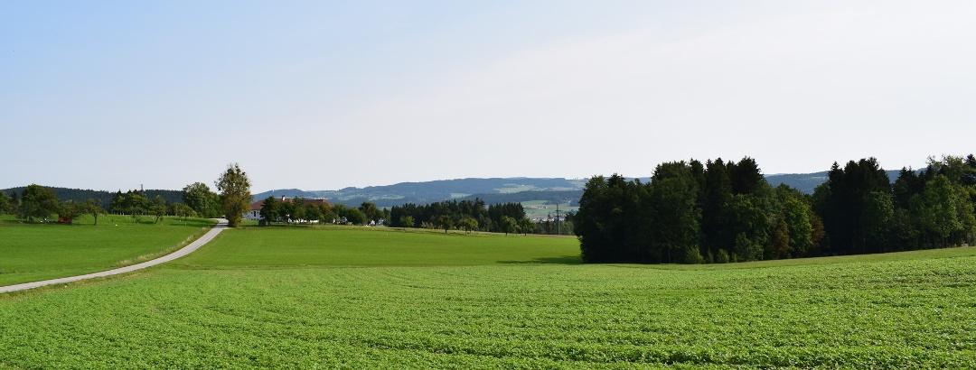 Das Mühlviertler Hügelland