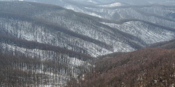Pohorie Börzsöny v zime (Csóványosi kilátó)