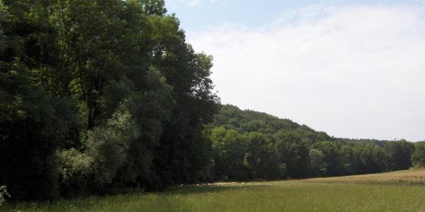 Auricher Naturlandschaft