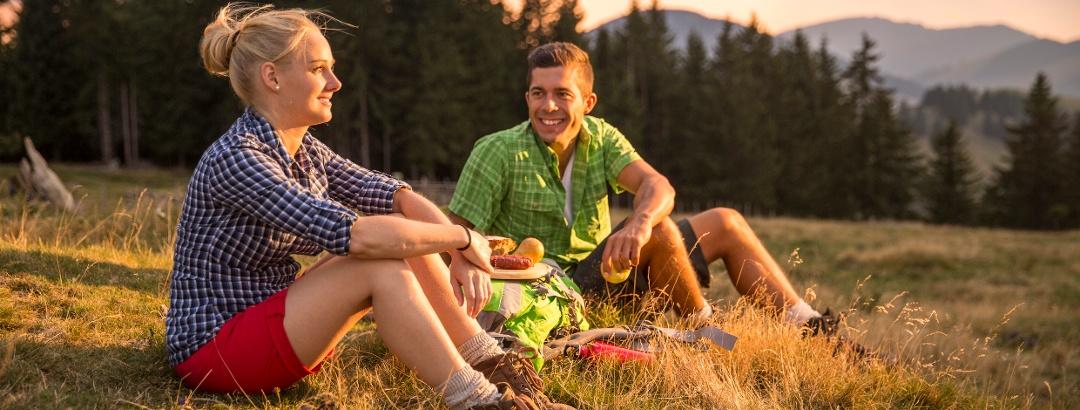 Picknick in der Almwiese