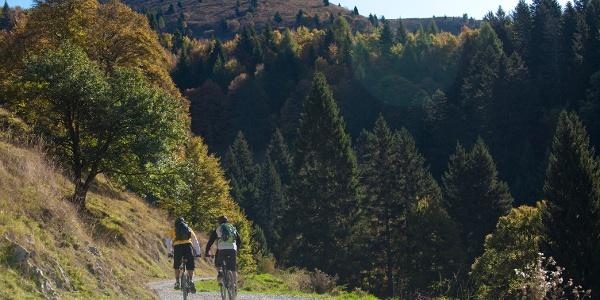 Mountain & Garda BIke