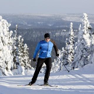 Cross-country skier in Ruka-Kuusamo