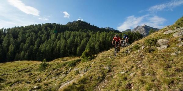 Mountainbike/E-Bike Stabele Alm