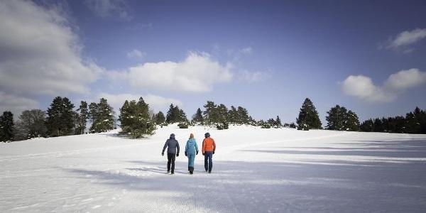 Wandern auf dem Premium-Winterwanderweg Schneewalzer