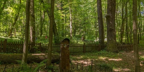 A hét magyar katona sírja a körtvélyesi erdei temető előtt