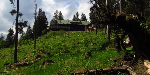 Falkensteinerhütte