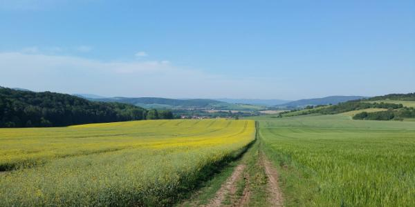 Blick zurück nach Kirchgandern, dahinter Hohengandern