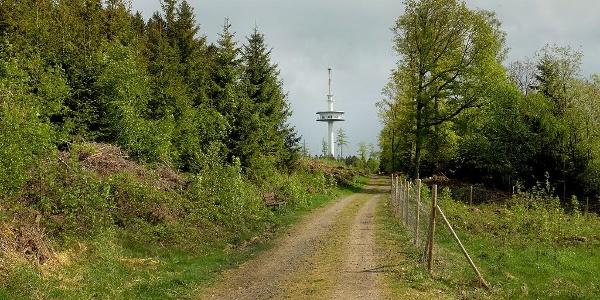 Funkturm auf der Eisernhardt in Siegen, höchster Punkt der Stadt