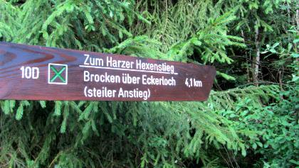 Foto von Wanderung: Über den Eckerlochstieg auf den Brocken • Harz (08.06.2018 16:37:57 #1)