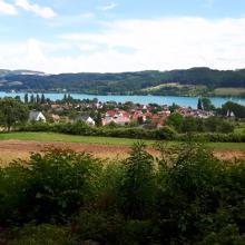 Aussicht vom Panoramaweg