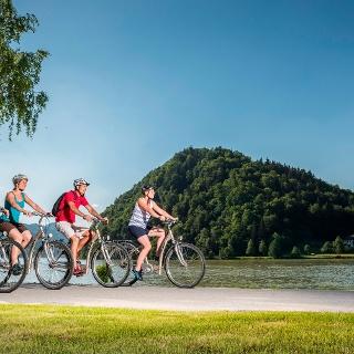 Donauradweg - Schlögener Schlinge