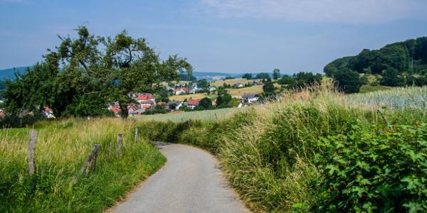 Blick auf Gadernheim