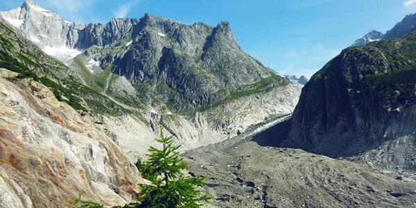 Glacier de Fiesch