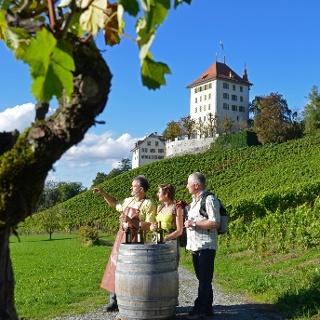 Weindegustation beim Weingut Heidegg