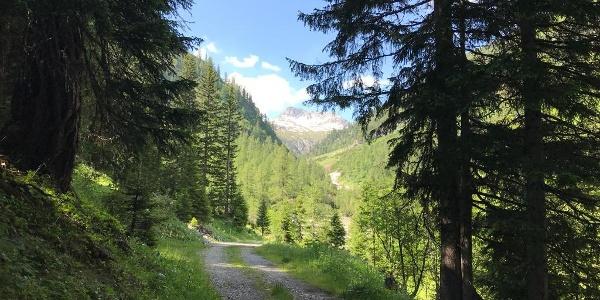 Fahrweg ins Alperschontal Richtung Ansbacher Hütte