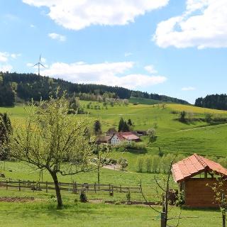 Blick Richtung Hintere Höfe und Hoheck