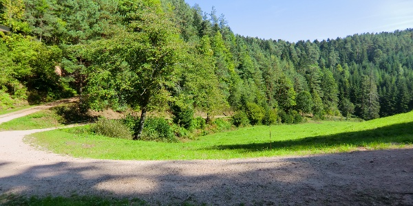 Vogelbachtal
