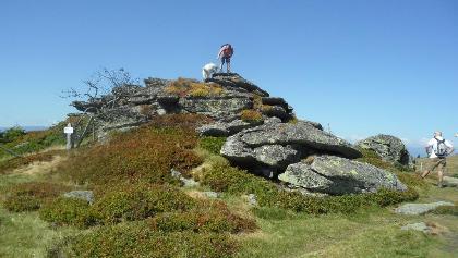 Felsformationen auf der Hirschegger-Alm