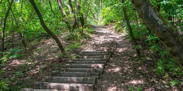 Lépcső a Mátyás-hegy turistaösvényén