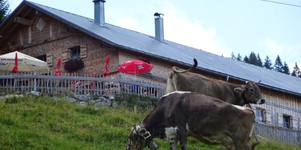 Alpe Ornach