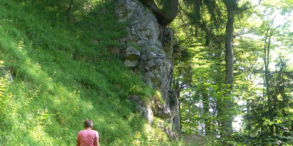 Wanderweg zur Hofalm