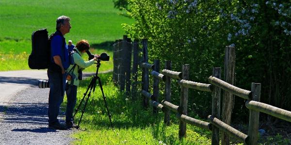 Der Flachsee ist Paradies für Foto- und Vogelfreunde.