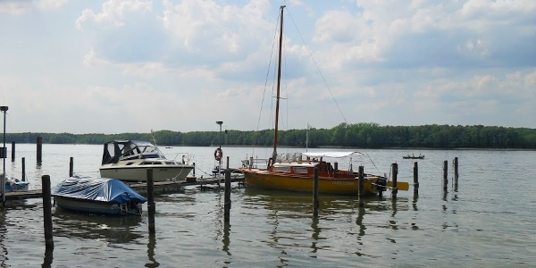 Ufer und Steg am Werbellinsee