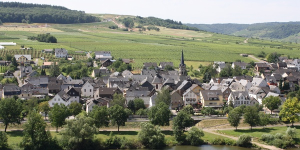 """Blick auf den Weinort Erden vom """"Treppchen"""" aus"""