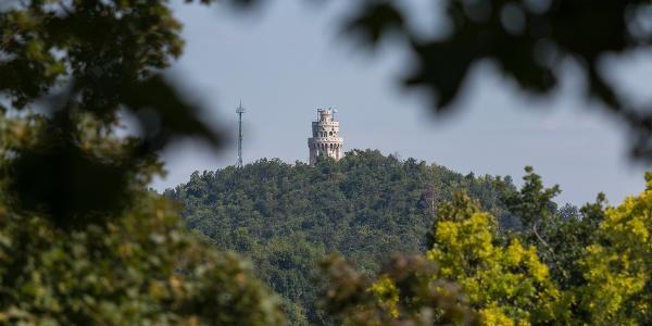 Az Erzsébet-kilátó a János-hegyen, a Normafa felől