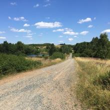 Kauschwitzer Heide